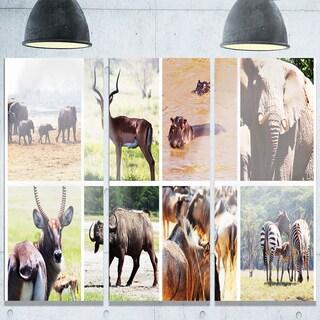 Designart 'Rich African Wildlife Collage' Animal Glossy Metal Wall Art