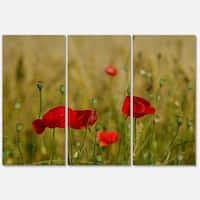 Designart 'Red Poppy Flower Field Background' Large Flower Glossy Metal Wall Art