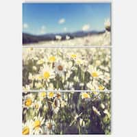 Designart 'Mountain Plain with Daisy Flowers' Large Flower Metal Wall Art