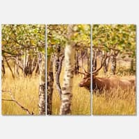 Designart 'Deer in Thick Forest Grassland' Oversized Landscape Glossy Metal Wall Art