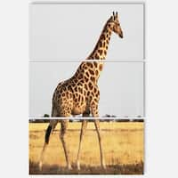 Designart 'Single Giraffe in Africa Walking' Extra Large African Metal Wall Art