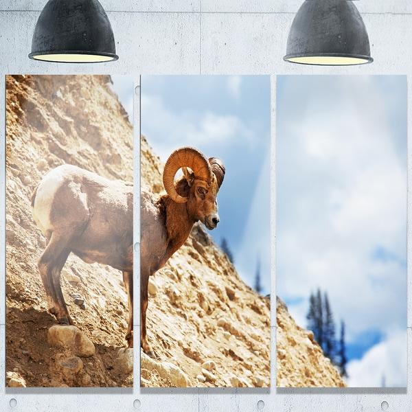 Designart 'Single Goat on Rocky Mountain' Extra Large Animal Metal Wall Art