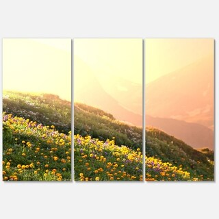 Designart 'Flowering Mountain Meadow View' Oversized Landscape Glossy Metal Wall Art