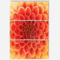 Designart 'Abstract Orange Flower Design' Extra Large Floral Glossy Metal Wall Art