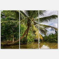 Designart 'Tropical River with Bent Coconut Palm' Oversized Landscape Glossy Metal Wall Art
