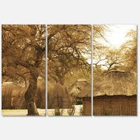 Designart 'Beautiful Rural African Huts' Oversized Landscape Glossy Metal Wall Art