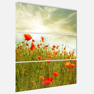 Designart 'Red Poppy Flowers in Green Field' Extra Large Floral Glossy Metal Wall Art