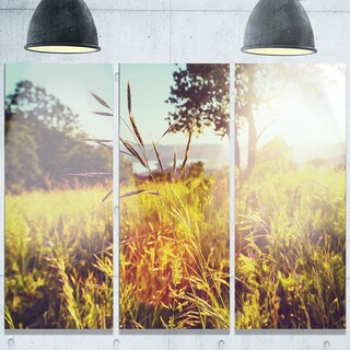 Designart 'Green Summer Meadow' Landscape Glossy Metal Wall Art
