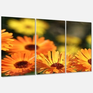 Designart 'Blooming Orange Marigold Flowers' Extra Large Floral Glossy Metal Wall Art