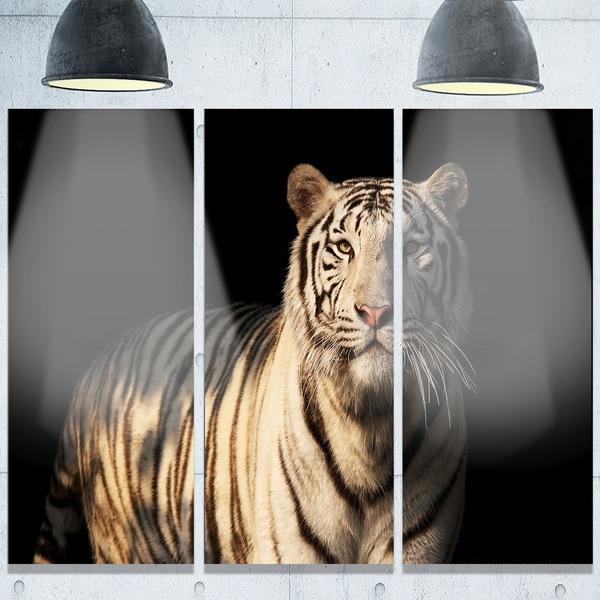 Designart 'White Bengal Tiger on Black' Animal Metal Wall Art