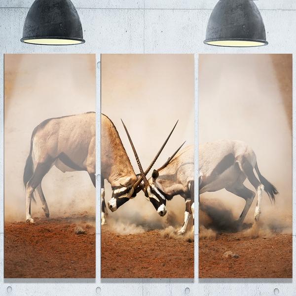 Designart u0026#x27;Gemsbok Antelopes Fightingu0026#x27; African Metal Wall Art & Designart u0027Gemsbok Antelopes Fightingu0027 African Metal Wall Art - Free ...