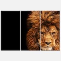 Designart 'Face of Male Lion on Black' Animal Metal Wall Art