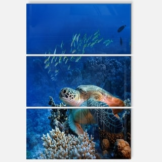 Designart 'Large Sea Turtle underwater' Animal Metal Wall Art
