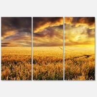 Designart 'Amazing Sunset over Yellow Field' Landscape Glossy Metal Wall Art