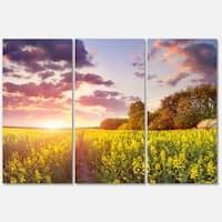 Designart 'Fantastic Yellow Field at Sunset' Large Landscape Art Glossy Metal Wall Art
