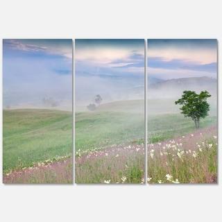 Designart 'Foggy Summer Morning in Mountains' Large Landscape Art Glossy Metal Wall Art