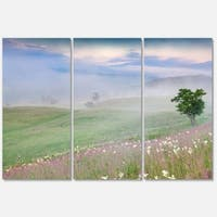 Designart 'Foggy Summer Morning in Mountains' Large Landscape Art Glossy Metal Wall Art