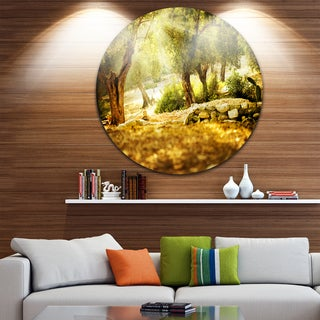 Designart 'Olive Trees' Photography Round Metal Wall Art