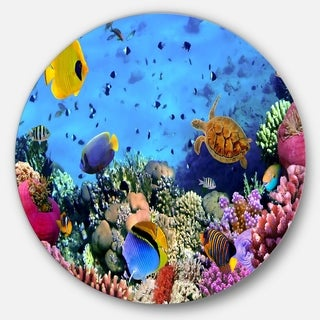 Designart 'Coral Colony and Coral Fishes' Seascape Photo Round Metal Wall Art