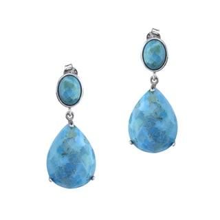 Pangea Mines 20x15mm Turquoise Drop Earrings