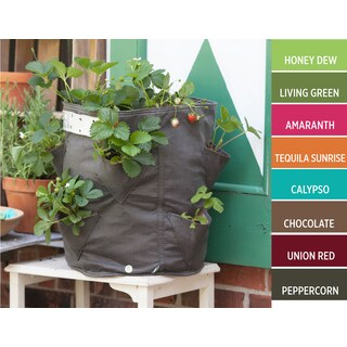 BloemBagz Calypso Fabric 9-gallon Strawberry Planter Grow Bag
