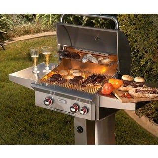 American Outdoor Grill 24 inch T Series In-Ground Post Grill with Rotisserie