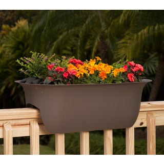 Bloem Modica Peppercorn Plastic 24-inch Deck Rail Planter