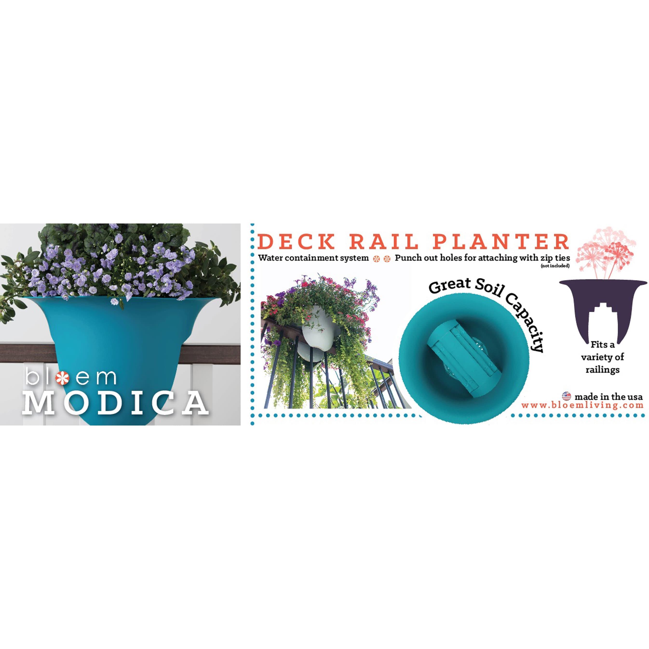 BLOEM 24 MODICA Rail Planter Passion Fruit Pack of 2