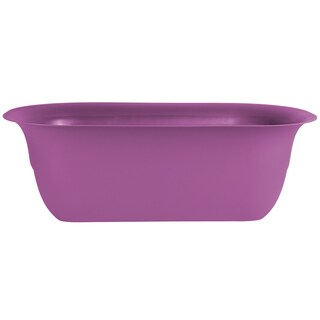 Bloem Modica Passion Fruit Purple Plastic 24-inch Deck Rail Planter