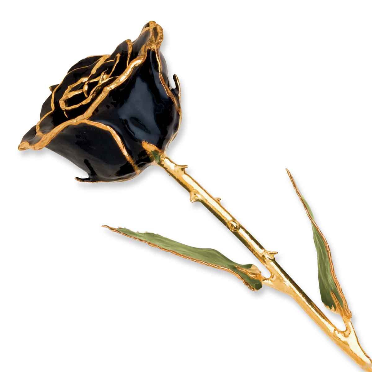 NO BRAND Lacquer Dipped 24k Gold Trim Black Rose (11 Inch)