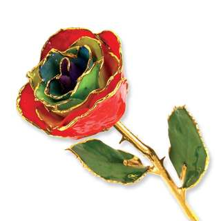 Lacquer Dipped 24k Gold Trim Gypsy Rainbow Rose