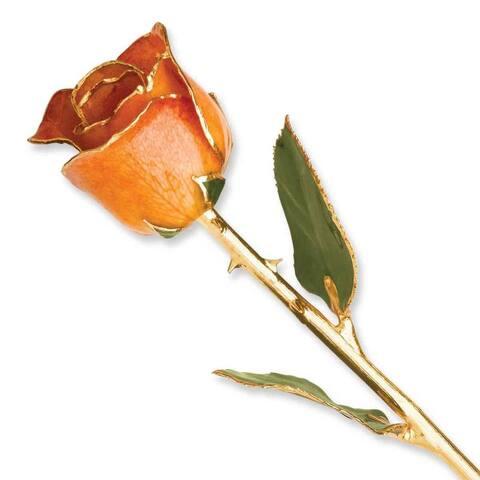 Lacquer Dipped 24k Gold Trim Orange Rose