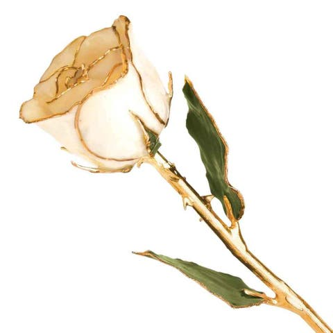 Lacquered Dipped 24K Yellow Gold-Plated Trimmed Green Leaf with White Rose