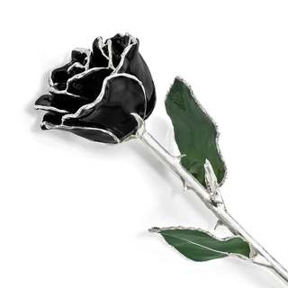 Lacquer Dipped Silver Trim Black Rose