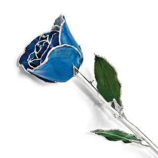 Lacquer Dipped Silver Trim Blue Rose
