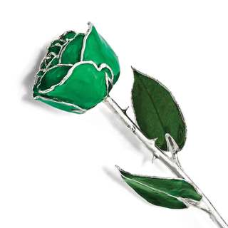 Lacquer Dipped Silver Trim Green Rose