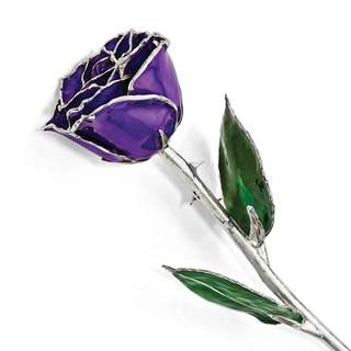 Lacquer Dipped Silver Trimmed Lilac Rose