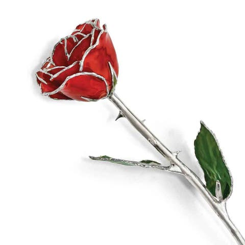 Lacquer Dipped Silver Trimmed Red Rose