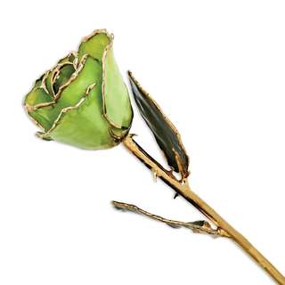 Laquer Dipped 24k Gold Trimmed Peridot/ Topaz Rose