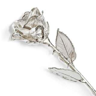 Silver Dipped Rose