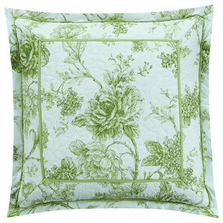Williamsburg Burwell 18x18 Decorative Throw Pillow