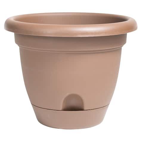 Bloem Lucca Brown Plastic 14-inch Self-watering Planter