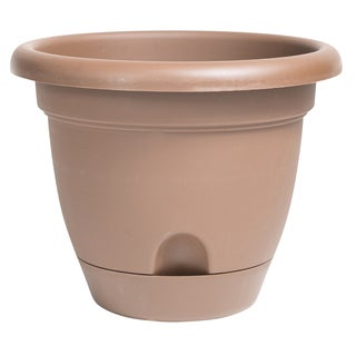 Bloem Lucca Chocolate 8-inch Self Watering Planter