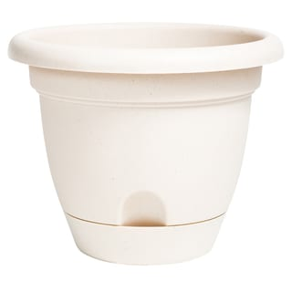 Bloem Lucca Taupe Plastic 6-inch Self-watering Planter