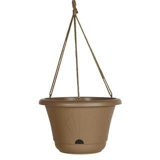 Bloem Lucca Chocolate Plastic 13-inch Self-watering Hanging Basket