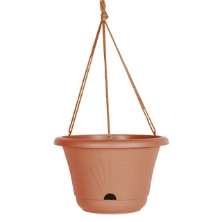 Bloem Lucca Terra Cotta 13-inch Self-watering Hanging Basket