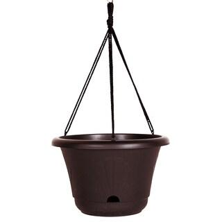 Bloem Lucca Exotica 13-inch Self Watering Hanging Basket