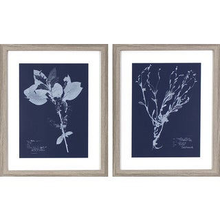 Set of 2 Flower Blueprints Grey Oak Woodgrain Framed Wall Art