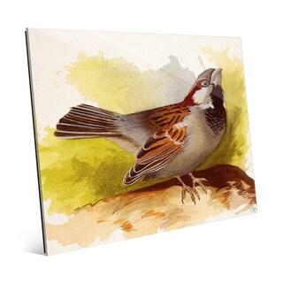 Curious Sparrow Glass Wall Art Print