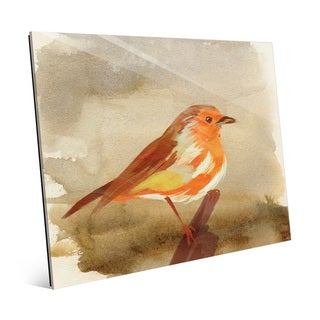 'Watercolor Tangerine Robin' Glass Wall Art Print